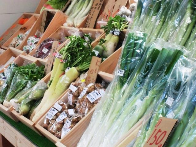 口臭の原因の野菜