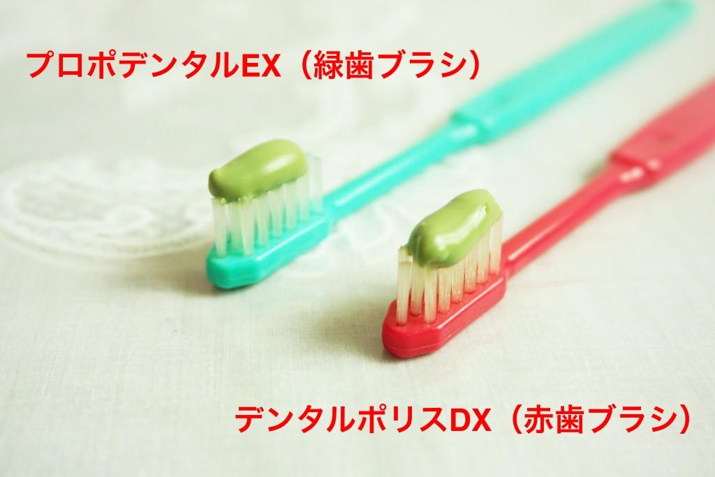 歯ブラシに乗せて比較
