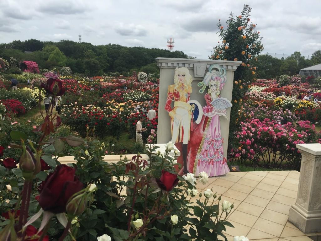 京成バラ園のベルサイユの薔薇コーナー